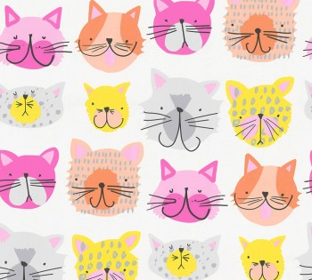 wallpaper colorful cat heads