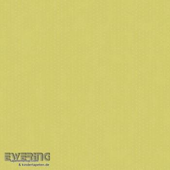 SALE 1 Rolle Punkte grün Papier-Tapete