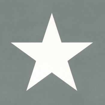 Sterne Mistelgrün Vliestapete