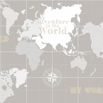 Stein-Grau Vliestapete Weltkarte